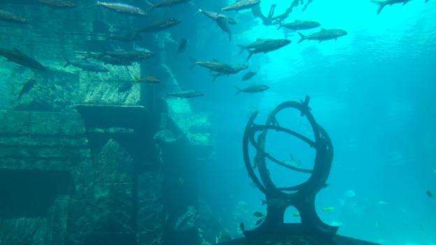 Атлантида уже сотни лет будоражит людей (Фото: Danita Delimont/Alamy Stock Photo)