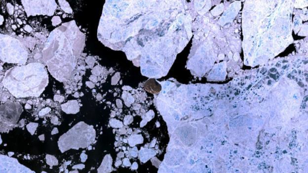 """Маленький """"блин"""" в центре картинки - остров Ханс, обычно окруженный льдами. До в последнее время вокруг него с новой силой разгораются территориальные споры. (Фото: Wikipedia/Finlay McWalter/CC BY 2.0)"""
